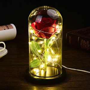 Beauty and The Beast Rose Kit Colorful Artificial Flower Rose Gift for Girl with Led Light in Glass Dome Decor Forever Rose Lights Eternal Rose (Black)