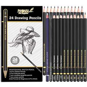 PANDAFLY 24 Piece Drawing and Sketching Pencil Art Set: Perfect for Beginners, Kids or Any Aspiring Artist - Includes Graphite Pencils and Charcoal Pencils, Woodless Pencil and Erasers Pencil