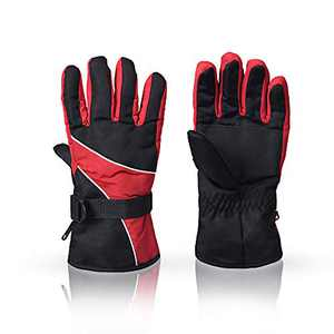 BIGTREETECH Ski Gloves,Winter Waterproof Ski Glove Non-Slip Keep Warm,Thinsulate Insulated Warm Winter Gloves, Fits Both Men Women (Classic Stlye,Red)