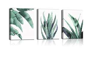 Wall art the greenery of wall of leaf of turtle back art flowers painting life canvas wall nature art tropical plant greenery wall sitting room kitchen bedroom bathroom wall decorates canvas office