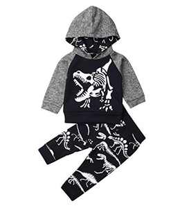 Toddler Infant Baby Boys Dinosaur Long Sleeve Hoodie Tops Sweatsuit Pants Outfit Set (0-6 Months, Style 8)