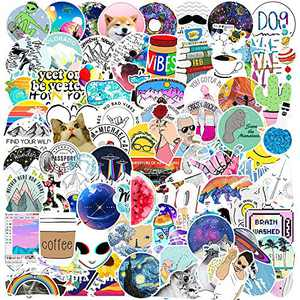 Vsco Girls Stickers for Teens Girls,Big 100-Pack Watter Bottles Stickers for Hydro Flask,Trendy Decals for Skateboard Guitar Luggage Bicycle