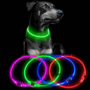 Clan-X Light Up Dog Collars - USB Rechargeable Glow Collar for Dogs, TPU Cuttable Led Dog Collar for Small Medium Large Dogs (Green)