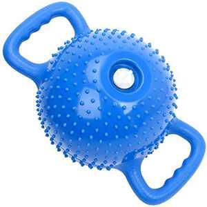 TECHMOO Water Filled Adjustable Weight Kettlebell Massage Flat Bottom Kettle Bells Double Ear Handle Dumbbells Portable Bodybuilding Strength Training Yoga Exercise Balls(Massage,Blue)