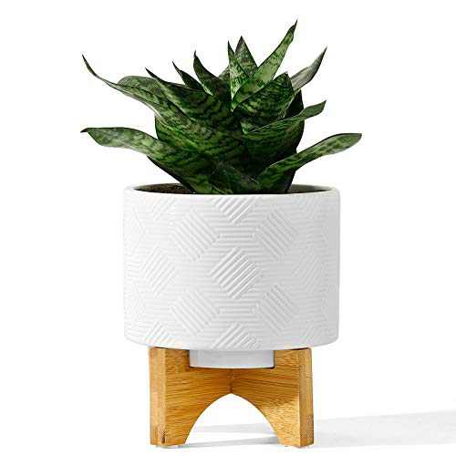 POTEY 029411 Ceramic Planter with Wood Stand - 5.2 Inch Inch Mid Century Plant Pots for Indoor Flowers Modern Decorative Medium Houseplants Container, Drainage Hole Included - White
