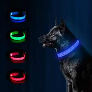 MASBRILL Glowing LED Dog Collar, USB Rechargeable Waterproof Pet Collars Night Safety LED Light Up with Nylon Webbing Makes Your Dog Visible, Flashing Light Collar Perfect for Small Dogs