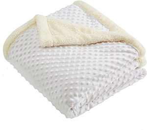 CHEE RAY Super Soft Minky Dot Blanket 60 x 50 in, Throw Blanket with Double Plush Sherpa Fleece Layer for Boys and Girls, White