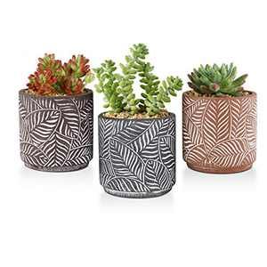 OppsArt Cement Succulent Planter Pots Cylinder 4 Inch Set of 3, Leaf Pattern Brown and Black Small Concrete Cactus Bonsai Pot Indoor Home Office Table Window Decoration Handicraft