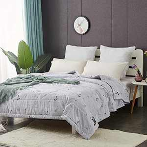 NATURETY Thin Comforter for Summer or Autumn,Thicken Fabric Duvet Insert Lightweight Bed Quilts (Grey, Twin)