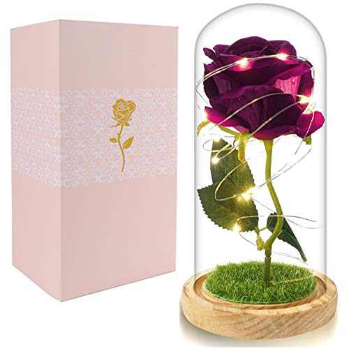 Beferr Beauty and The Beast Rose Enchanted Flower with LED Light in Glass Dome for Christmas Valentine's Day Mother's Day Birthday Best Gifts for Girlfriend Wife Women (Rose Red)