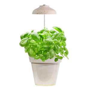 GrowLED LED Umbrella Plant Grow Light, Herb Garden, Height Adjustable, Automatic Timer, 5V Low Safe Voltage, Ideal for Plant Grow Novice Or Enthusiasts, Various Plants, DIY Decoration, Wood Pattern