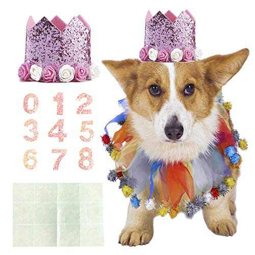 Coomour Dog Birthday Collar Pet Funny Tutu Costume with Birthday Crown Hat for Cat Puppy Party Supplies (Small,Pink)