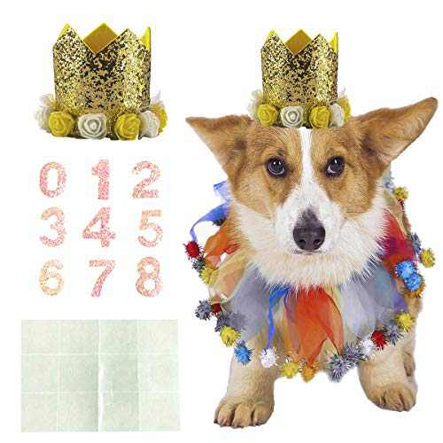 Coomour Dog Birthday Collar Pet Funny Tutu Costume with Birthday Crown Hat for Cat Puppy Party Supplies (Medium,Gold)