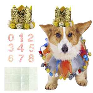Coomour Dog Birthday Collar Pet Funny Tutu Costume with Birthday Crown Hat for Cat Puppy Party Supplies (Small,Gold)