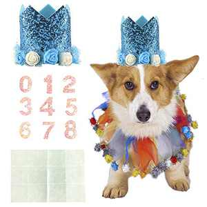 Coomour Dog Birthday Collar Pet Funny Tutu Costume with Birthday Crown Hat for Cat Puppy Party Supplies (Large,Blue)