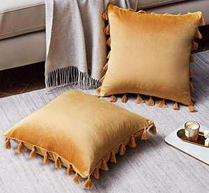 Western Home Pack of 2 Velvet Decorative Throw Pillow Covers with Tassels Fringe Boho Accent Cushion Case for Couch Sofa Bed 20 x 20 Inch Gold