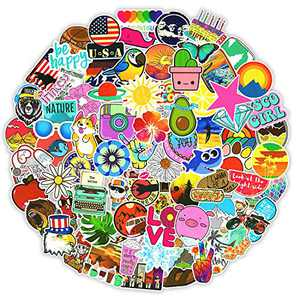 100 Pcs Funny Stickers Pack,Random Stickers for Skateboard Flask Laptop Water Bottles,Cute Trendy Sticker for Teens Adult,Waterproof Graffiti Decals,Extra Durable 100% Vinyl