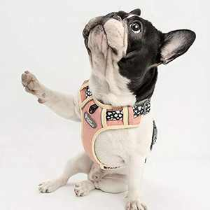 TUFF HOUND Dog Harness,No-Pull Pet Harness,Adjustable Soft Padded Dog Vest with 2 Leash Clips, Reflective No-Choke Pet Oxford Vest for Small Dogs (Adorable Pink, L (Neck: 48-70cm. Chest: 56-73cm))…