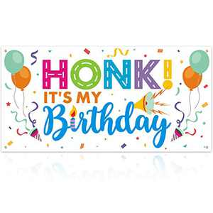 Honk! It's My Birthday Banner Quarantine Birthday Banner Social Distancing Party Ideas At Home Party Decorations Drive By Birthday Parade Sign Beep Beep Party Decor Car Party Favors