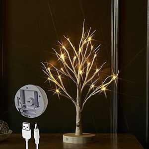LITBLOOM Lighted Tabletop Birch Tree with Timer USB Plug-in and Battery Operated 18IN 24 LED Twig Tree Lights for Wedding Party Easter Christmas Holiday Decoration