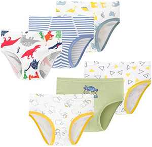 Boys Dinosaurs Underwear Toddler Kids Cotton Panties Breathable Comfort Briefs(Pack of 6)