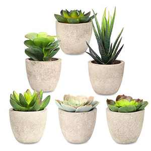 Artificial Succulent Plants Potted, Assorted Decorative Faux Potted Succulents Plants Fake Cactus Aloe with Gray Pots Faux Plants Outdoor Room Decor, Thanksgiving Decorations for Home, Set of 6