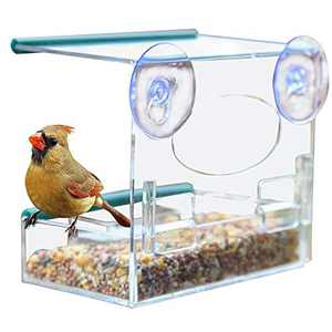 Window Bird Feeder with 2 Powerful Suction Cups, Can Hold Seed Food Trays, Wild Bird Feeder with Drain Hole