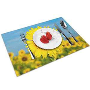 Abucaky Place Mats Set of 4 Sunflowers Field Placemats Dining Table Mats for Home Kitchen Dining Table Decorations 12 X 18 Inch