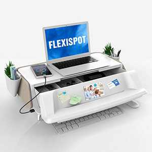 FlexiSpot Monitor Stand Workstation Laptop Stand Computer Riser with Removable Storage Holder Storage Drawer USB Charging Port (Light Tan)