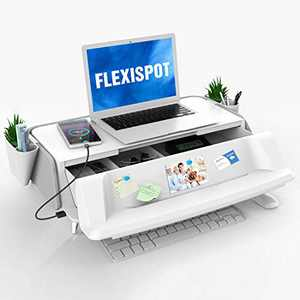 FlexiSpot Monitor Stand Workstation Laptop Stand Computer Riser with Removable Storage Holder Storage Drawer USB Charging Port (Gray)