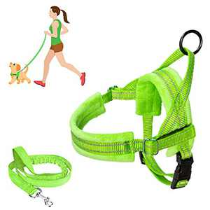 SlowTon No Pull Small Dog Harness and Leash, Heavy Duty Easy for Walk Vest Harness Soft Padded Reflective Adjustable Puppy Harness Anti-Twist 4FT Pet Lead Quick Fit for Small Dog Cat Animal (XXS, G)