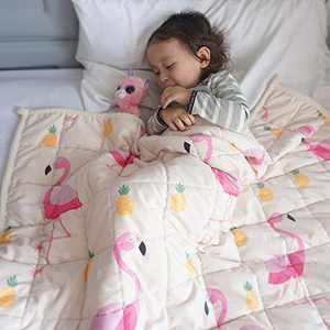 ZonLi Plush Weighted Blanket 5 lbs(36''x48'', Flamingo), Twin Size Weighted Blanket for Kids, Soft Fleece Heavy Blanket with Glass Beads