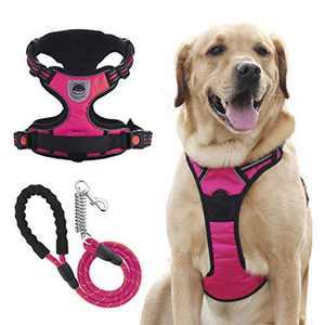 VASTPET Dog Harness Leash Set, Reflective Adjustable Soft Padded No Pull Pet Vest Harness with Upgraded 5 FT Dog Leash