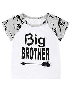 Aslaylme Little Kids Big Brother Tee Boys Dinosaur Theme Tops (Gray,4T)