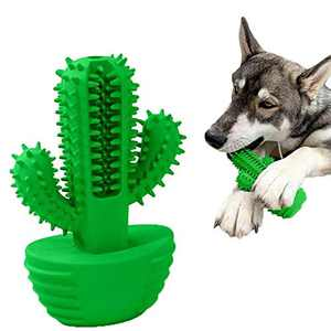 JUKOO Cactus Shaped Dog Chew Toys for Aggressive chewers, Dog Dental Care Brushing Stick, Milk Scent Natural Rubber Dog Chew Toothbrush for Puppy Small Medium Big Dog