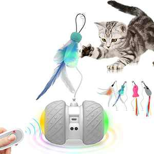 Malsipree Remote Control Interactive Cat Toys for Indoor Cats, 2 Speed Robotic Automatic/Manual Mode with Ball Feathers Catnip Mouse/Fish, Electronic Motorized Chasing Toy for Kitten/Cat Bentopal P07