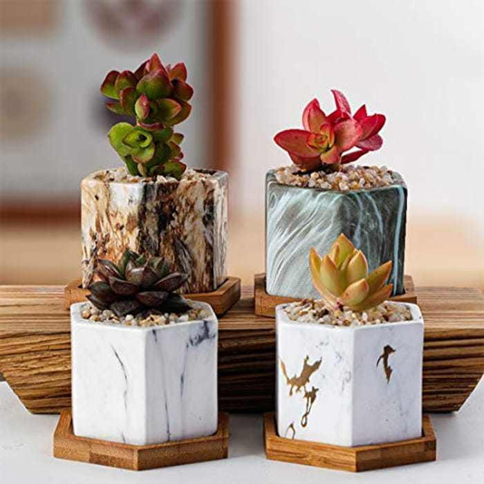 ARTKETTY 7.6 CM Marble Succulent Plant Pots, Small Cactus Plant Pots with Drainage Hole for Indoor Plants, Ceramic Hexagon Flower Plant Container with Tray, Set of 4