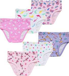 Girls Giraffe Underwear Toddler Kids Cotton Panties Cute Briefs(Pack of 6) 3T