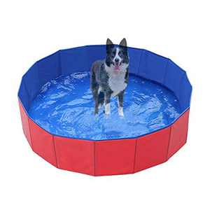 Zology Foldable Dog Pet Bath Pool Collapsible Dog Pet Pool Bathing Tub Kiddie Pool for Dogs Cats and Kids