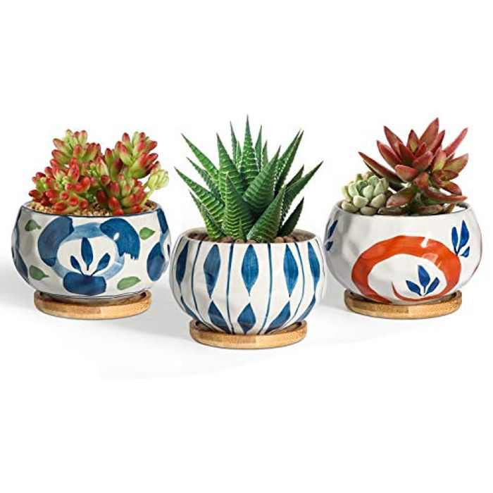 T4U 9.5CM Succulent Pots Japanese Style with Bamboo Saucer Set of 3, Ceramic Plant Planter Cactus Container Flower Holder Bowl Home and Office Decoration Christmas Wedding Gift