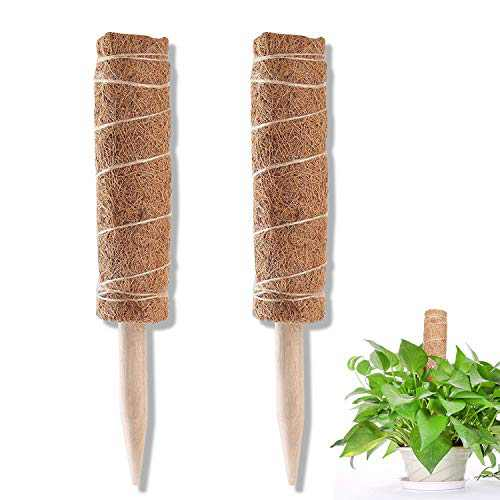 Frebw 2pcs 16 Inches Coir Totem Pole with 15 Pcs Plant Labels, Coir Moss Totem Pole Coir Moss Stick for Plant Support Extension, Climbing Indoor Plants, Creepers