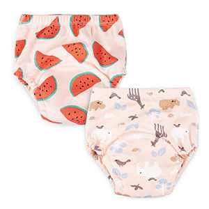 Baby Toddler 2 Pack Cotton Training Pants Toddler Potty Training Underwear for Boy and Girl 12M,2T,3T,4T (2T, Pink)