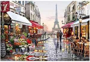 HJAA DIY 5D Diamond Painting Eiffel Tower by Number Kits Flower Street Full Drill Crystal Rhinestone Embroidery Pictures Arts Craft for Home Wall Decor Gift Adults and Kids(16x12inch)