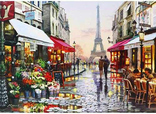 Puzzles for Adults Jigsaw Puzzles 1000 Pieces for Adults Kids– Paris Flower Street Landscape Jigsaw Puzzle Artwork Intellective Educational Toy