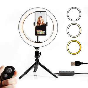 Sanwo Ring Light with Stand and Phone Holder, 10.2 inch Dimmable Selfie Ring Light with Tripod Stand, Remote, Desktop Ringlight for Makeup, Tiktok, YouTube, Phontography and Live Streaming