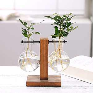 CABINAHOME Glass Planter Bulb Vase, Water Planting Glass Vase with Retro Solid Wooden Stand for Home Office and Coffee Shop, Horizontal Double Bottle