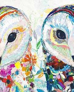 DIY 5D Diamond Painting by Numbers Kits for Adults,Full Drill Crystal Rhinestone Arts Craft Canvas Supply for Home Wall Decor Gift(16x14 inch Owl)