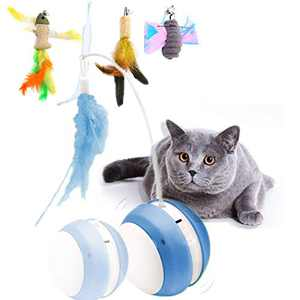 GAPZER Interactive Cat Toy Ball, 360 Spinning Pet Motion Ball Toys, Feather Fish Toys for Kitten Large Cat, (Blue)