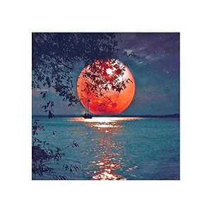 AMEMNY DIY 5D Red Moon Diamond Painting Kits for Adult Painting by Number Kit Round Drill Embroidery Cross Stitch Landscape Diamond Painting Set for Indoor Wall Decoration Gifts Arts and Crafts
