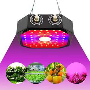 1000W LED Grow Light, MauTolz COB Full Spectrum Plant Growing Light with Dual Switch & Dual Chips for Hydroponic Indoor Plants Veg and Flower (Actual Power 110watt)